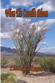 when_the_ocotillo_bloom___cover.jpg